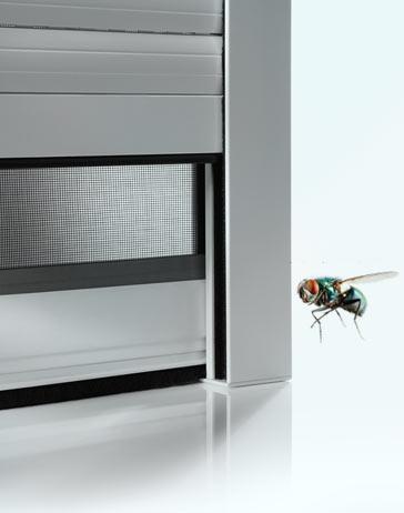 Fliege vor einem Fenster mit Insektenschutzgitter